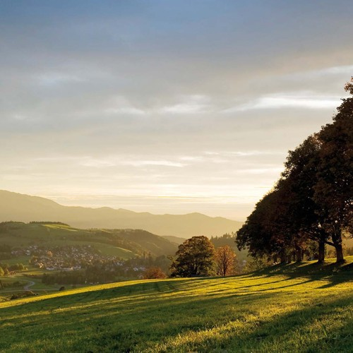 3 Wellness Tage im Schwarzwald in St. Peter im ...